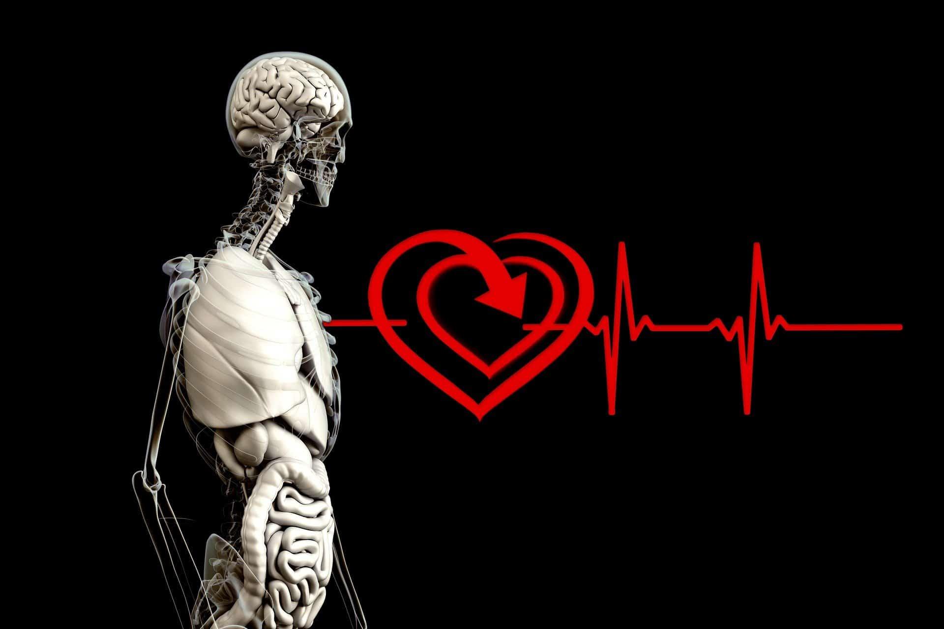 Comprar un concentrador de oxígeno en Terapiacpap mejora la calidad de vida de los pacientes, mientras reciben terapia.